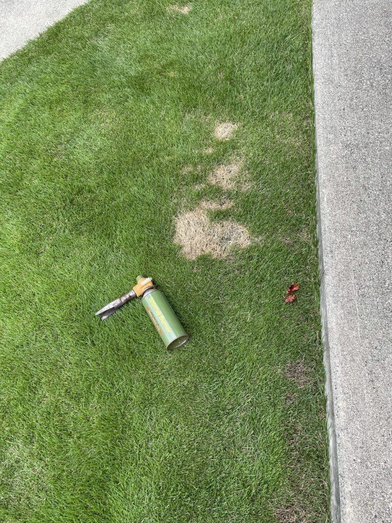 芝生の病気部分の処理